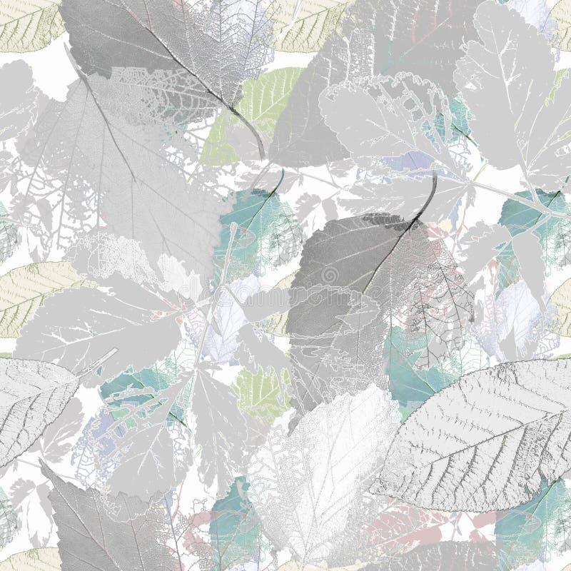 Semblable Botanique avec feuilles en gris blanc illustration stock