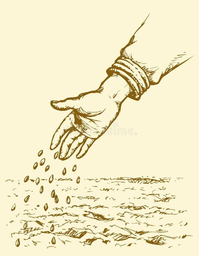 Seme della semina della mano nel campo arato Illustrazione di vettore illustrazione vettoriale