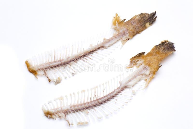 Semelle de deux ar tes de poisson image stock image du for Nourriture du poisson