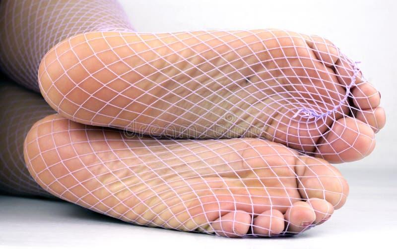 Semelles nyloned par filet images libres de droits