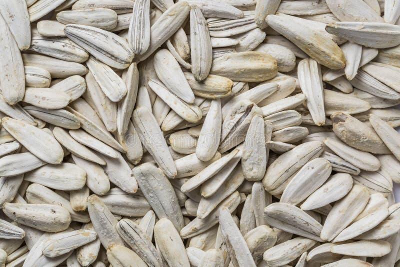 A semente de girassol orgânica para o fundo usa a textura fotos de stock