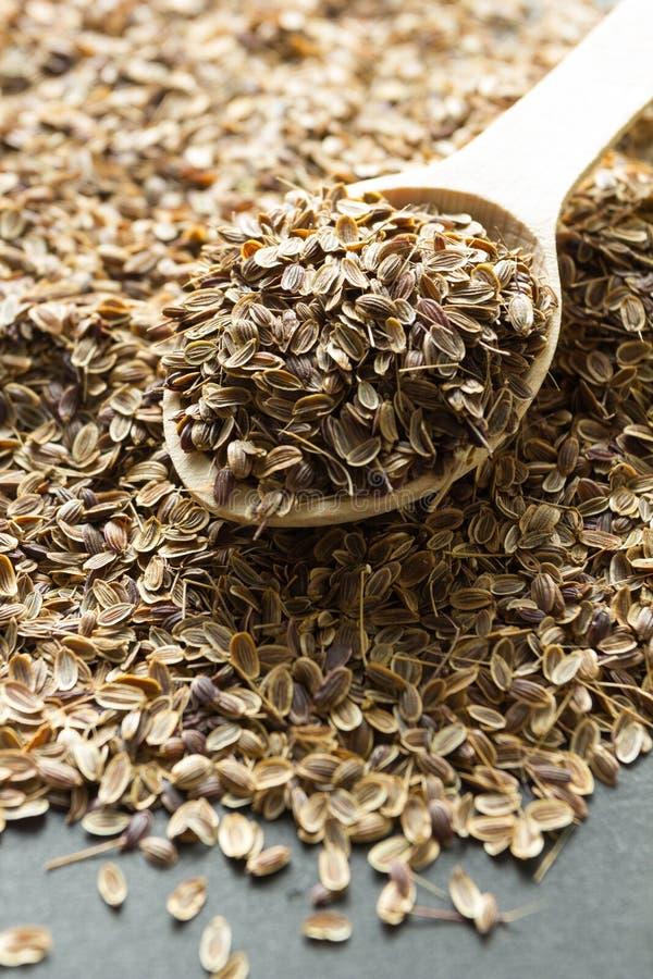 Sementes de aneto org?nicas secas em uma colher de madeira em um fundo preto verticalmente imagem de stock royalty free