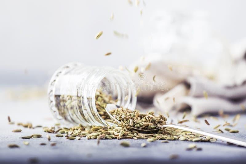 Sementes de erva-doce em um frasco de vidro e em uma colher do metal, fundo cinzento da mesa de cozinha, foco seletivo fotografia de stock royalty free