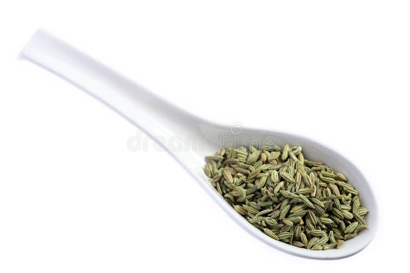 Sementes de erva-doce em uma colher imagem de stock