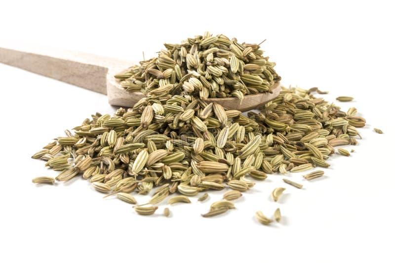 Sementes de erva-doce na colher de madeira no fundo branco foto de stock royalty free