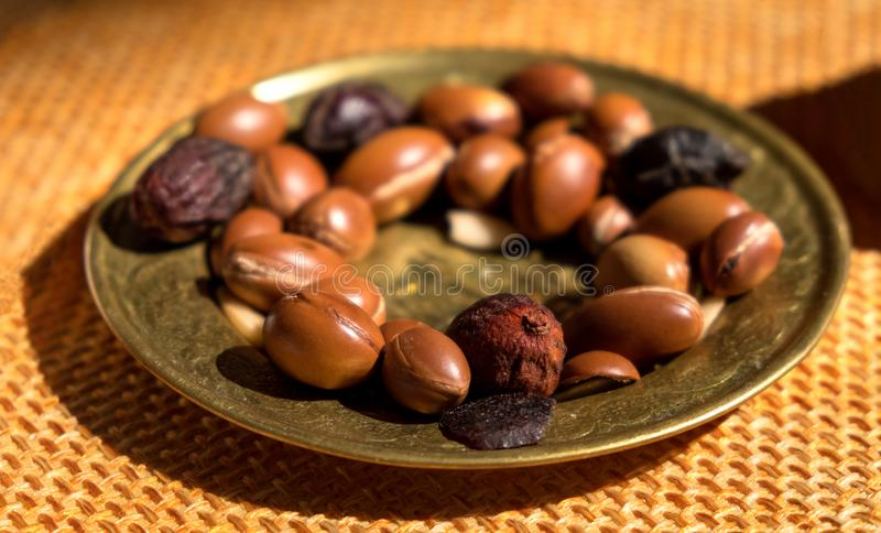Sementes nuts do argão em uma placa - o argão é útil como o antioxidante para marcas de estiramento curas da pele das inflamações fotografia de stock