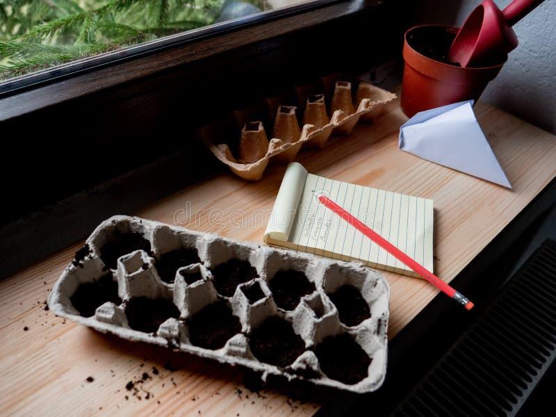 Sementes vegetais em caixas de ovos e notas com lápis imagens de stock royalty free