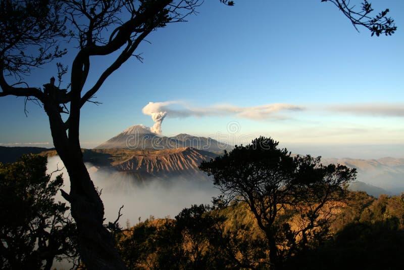 Semeru volcano. Sunrise view to the Semeru volcano, Java Island, Indonesia stock image