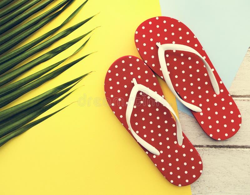 Semester Flip Flop Sandals Relaxation Conce för strandsommarferie arkivbild