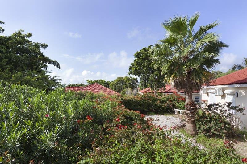 Semesterort på Curacao arkivbilder