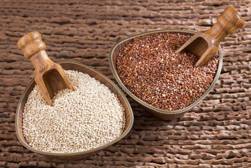 Semi bianchi e rossi della quinoa in ciotole di legno - Chenopodium quinoa immagini stock libere da diritti