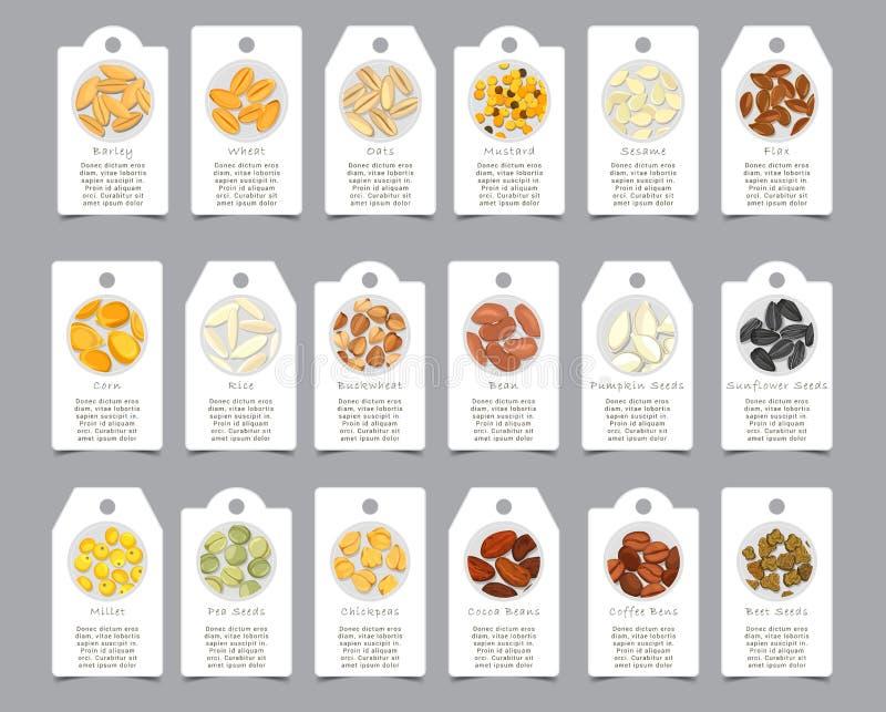 Semi del condimento sulle carte di carta come segno illustrazione vettoriale