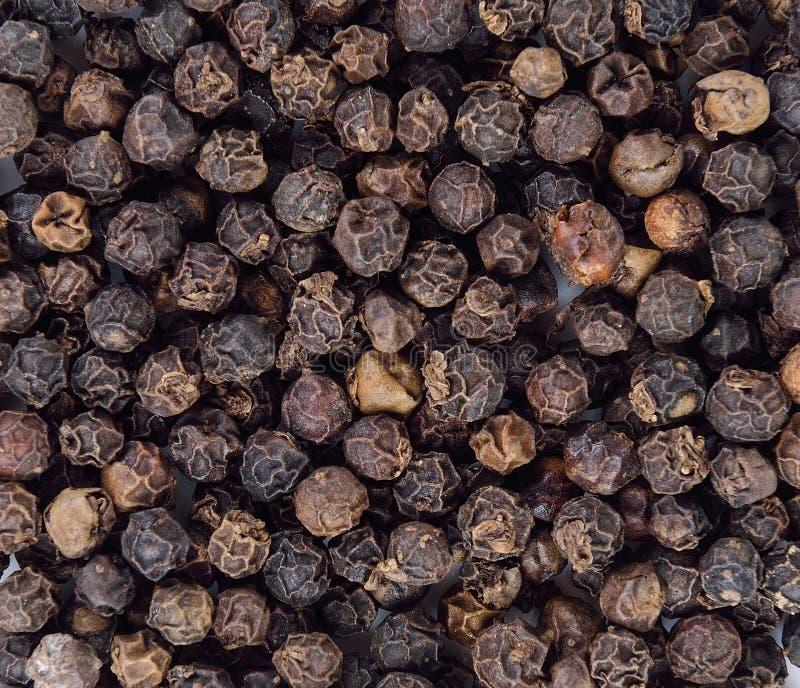 Semi del pepe nero immagini stock