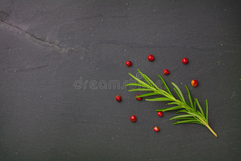 Semi del peperone e dei rosmarini immagini stock
