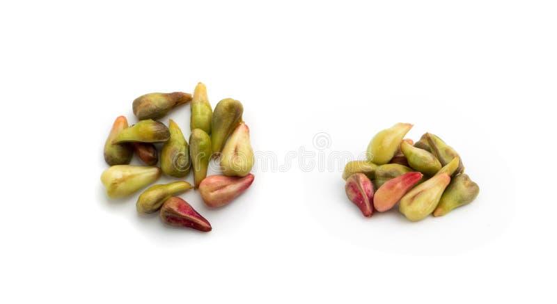 Semi dell'uva su bianco fotografie stock