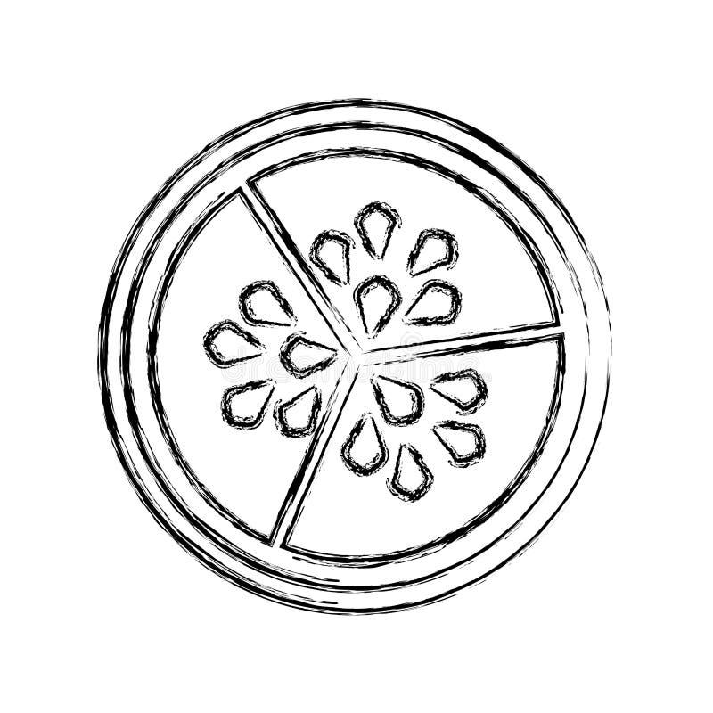 Semi della verdura del cetriolo royalty illustrazione gratis