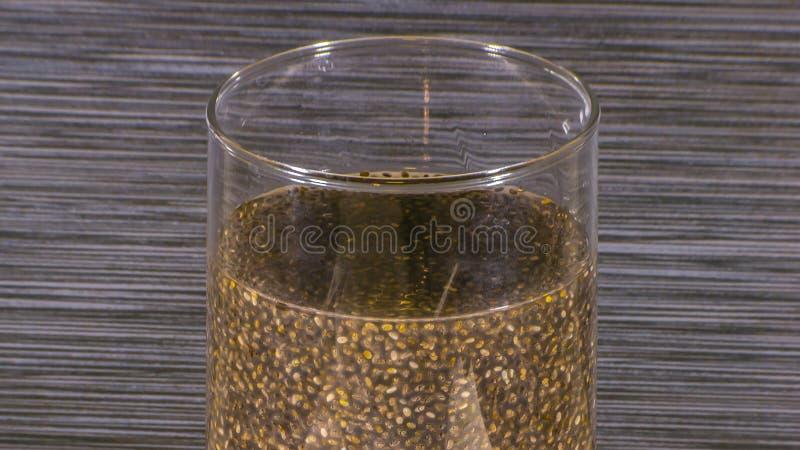 Semi di Chia inzuppati in acqua dentro un vetro trasparente fotografia stock libera da diritti