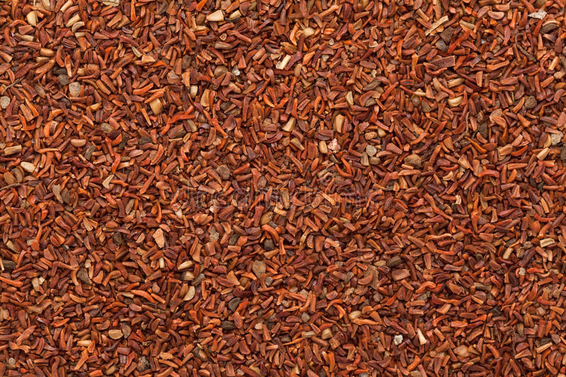 Semi di mogano rossi organici (di eucalyptus pellita) fotografie stock