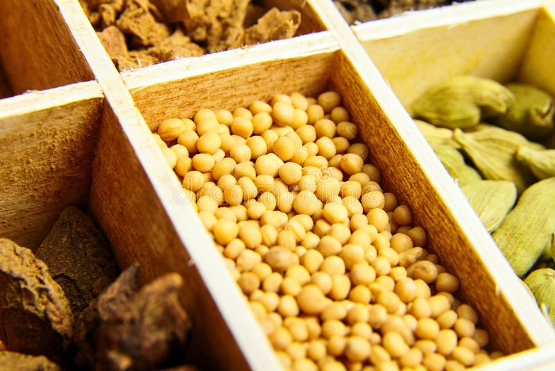Semi di senape gialli Varie spezie asciutte immagine stock
