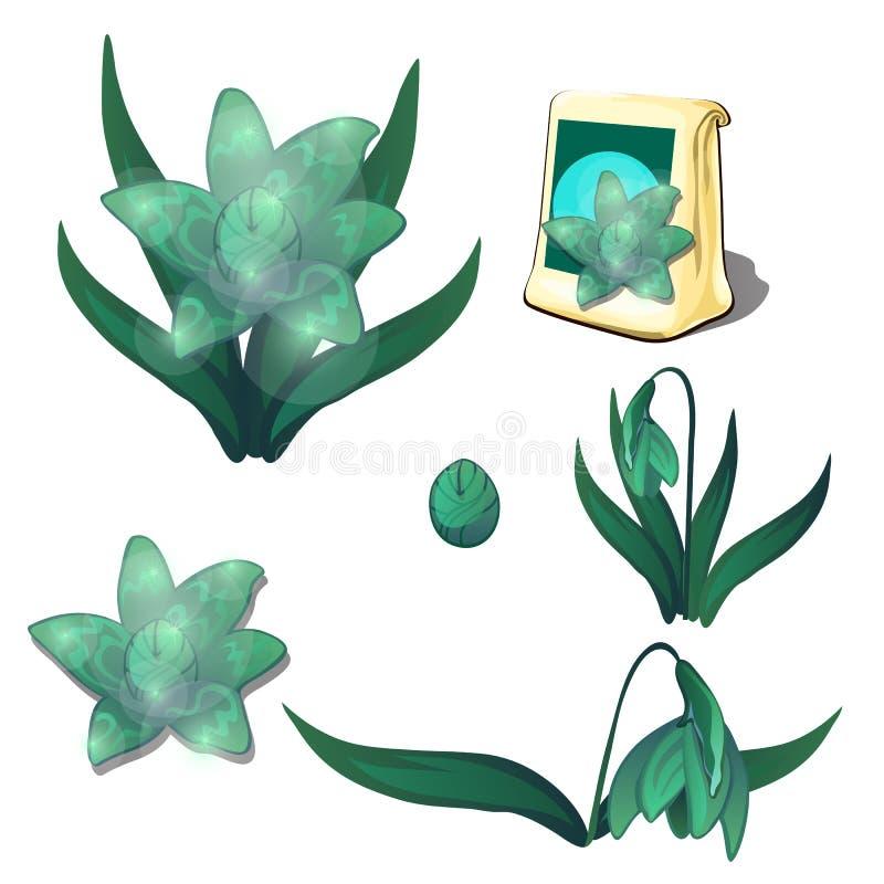 Semi, fasi di crescita e fiori verdi appassenti royalty illustrazione gratis