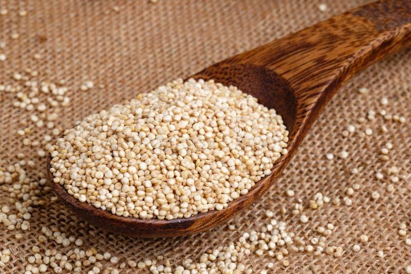 Semi organici della quinoa sul cucchiaio di legno fotografia stock