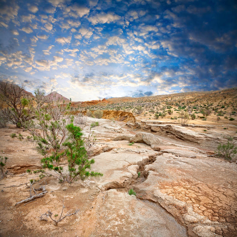 Semi paisaje del desierto imagenes de archivo