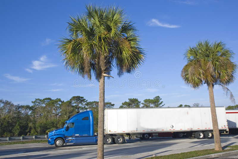 Semi-Truck parked under palms royalty free stock images