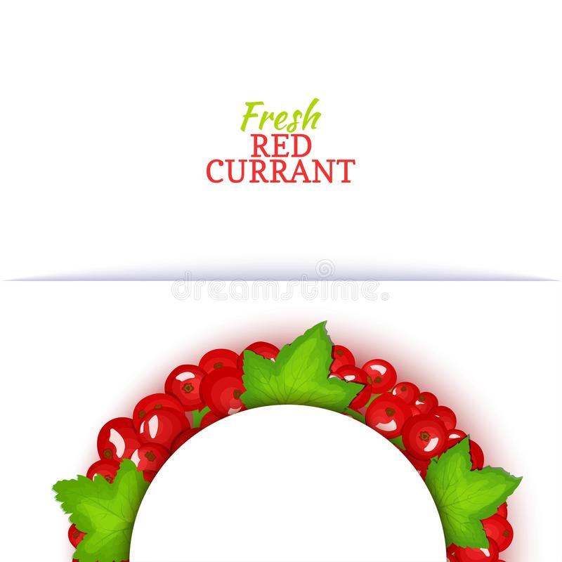 Semicircle colored frame composed of delicious red currant fruit. Vector card illustration. Red currant berry half-round. Frame for design of food packaging royalty free illustration