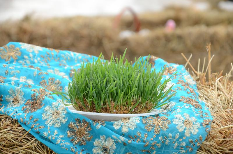 A semicircle with a red ribbon on the summer and dry grass . A seminal siege on a red ribbon on a dry grass. Novruz national Azerbaijan holiday spring new year stock photography