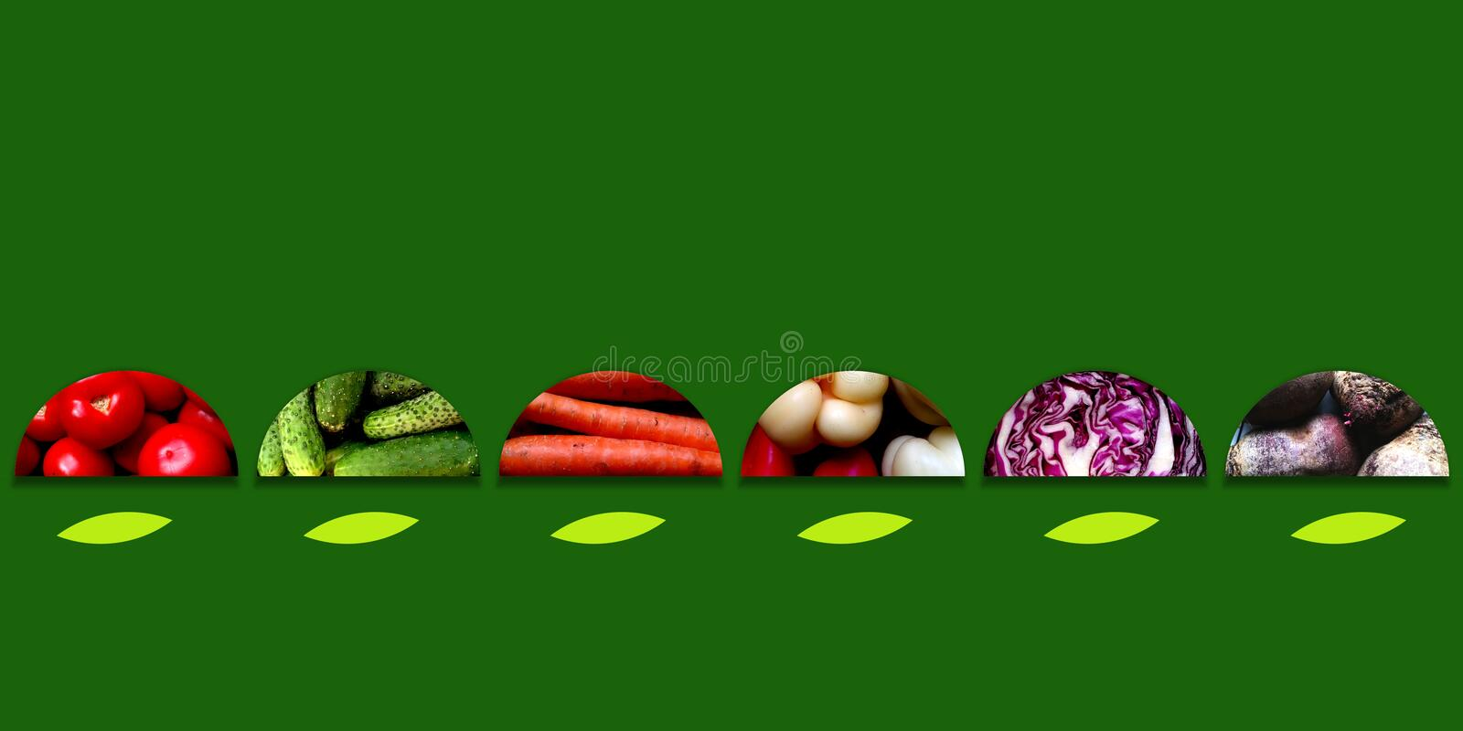 Semicircles full of fresh vegetables on dark green background. Collection of six semicircles with abstract leafs underneath and full of fresh vegetables stock illustration