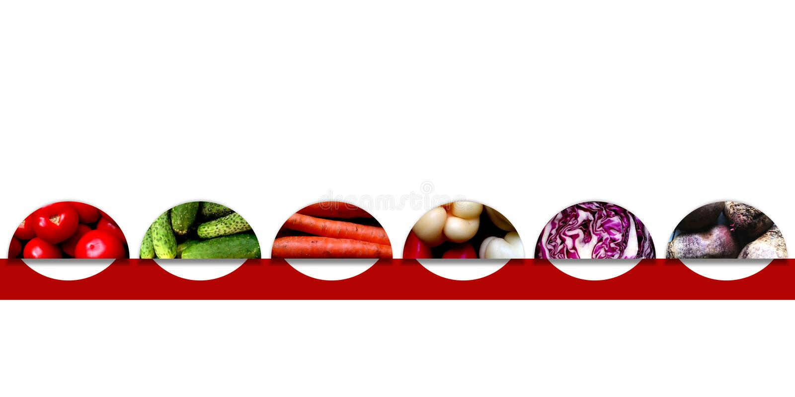 Semicircles with organic vegetables. Set of six semicircles full of organic vegetables: tomatoes, cucumbers, carrots, sweet peppers, red cabbage and beetroots royalty free illustration