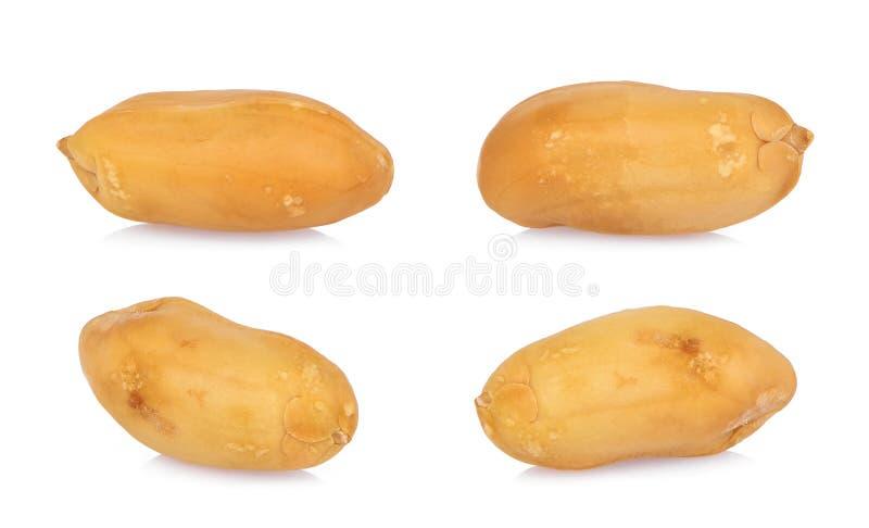 Semilla asada de los cacahuetes aislada en blanco fotografía de archivo libre de regalías