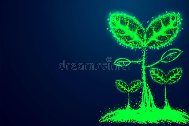 semilla que crece, concepto del negocio Planta de las líneas y de los triángulos, diseño polivinílico bajo del wireframe del extr ilustración del vector