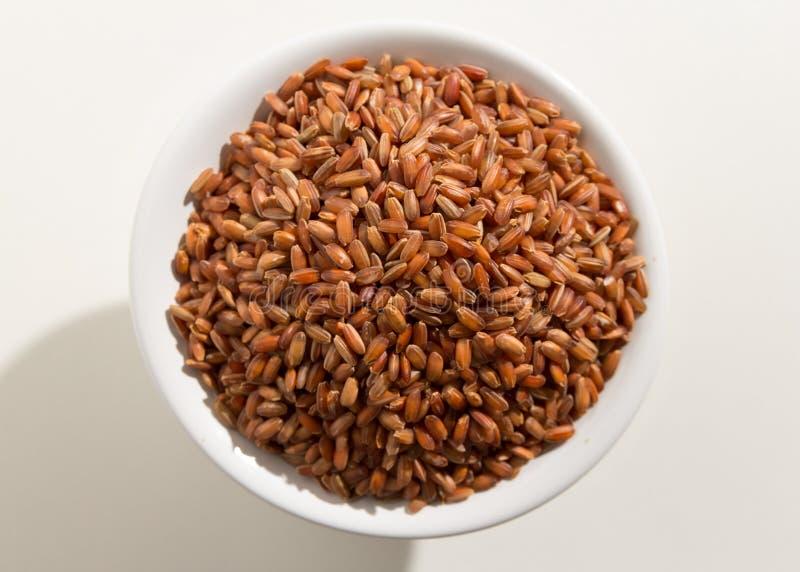 Semilla roja del arroz Vista superior de granos en un cuenco Fondo blanco imagen de archivo