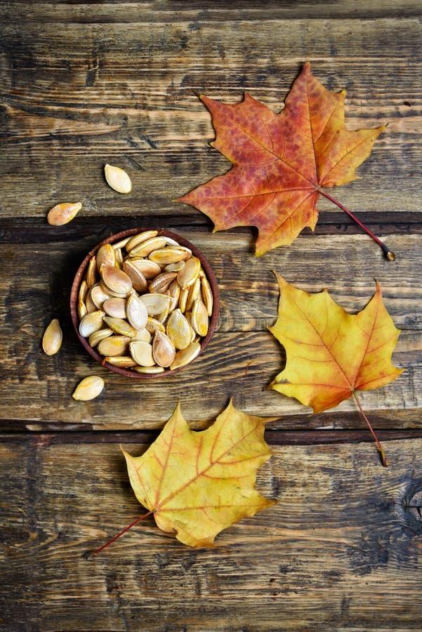 Semillas de calabaza y hojas de otoño foto de archivo