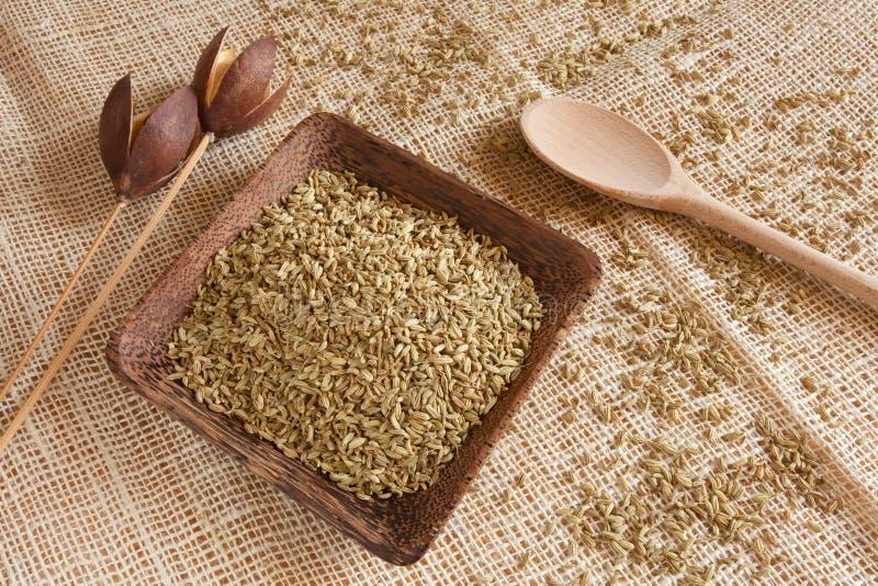 Semillas de hinojo como ingrediente natural en una taza de madera - estilo rural foto de archivo
