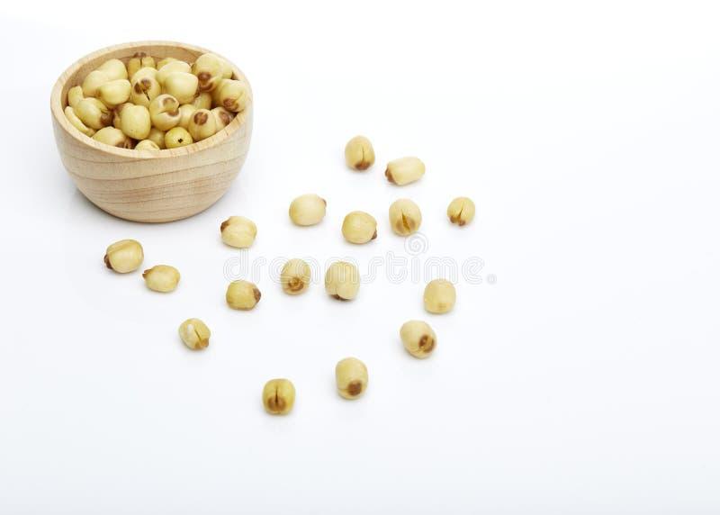 Semillas de Lotus fotos de archivo libres de regalías