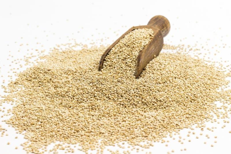 Semillas de quinua fuente de fibras y grasas vegetales foto de archivo libre de regalías