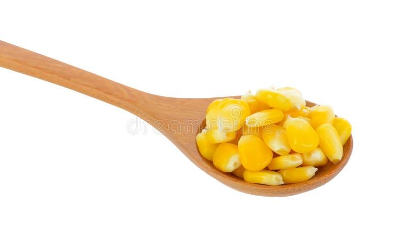 Semillas del maíz en la cuchara de madera imágenes de archivo libres de regalías