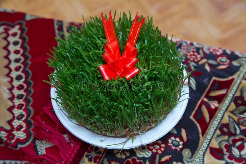 A seminal floor on a red ribbon on a dry grass . Novruz national Azerbaijan holiday spring new year celebration concept, wheat. Novruz national Azerbaijan royalty free stock images