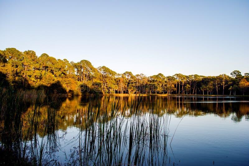 Seminole sjön parkerar, FL USA royaltyfria bilder