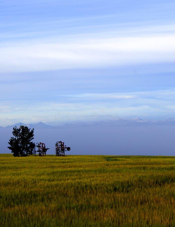 Semoirs de prairie avec des montagnes images stock