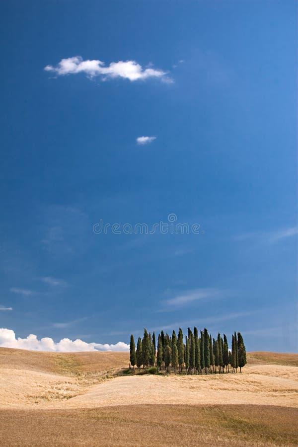 Semplicemente la Toscana immagini stock