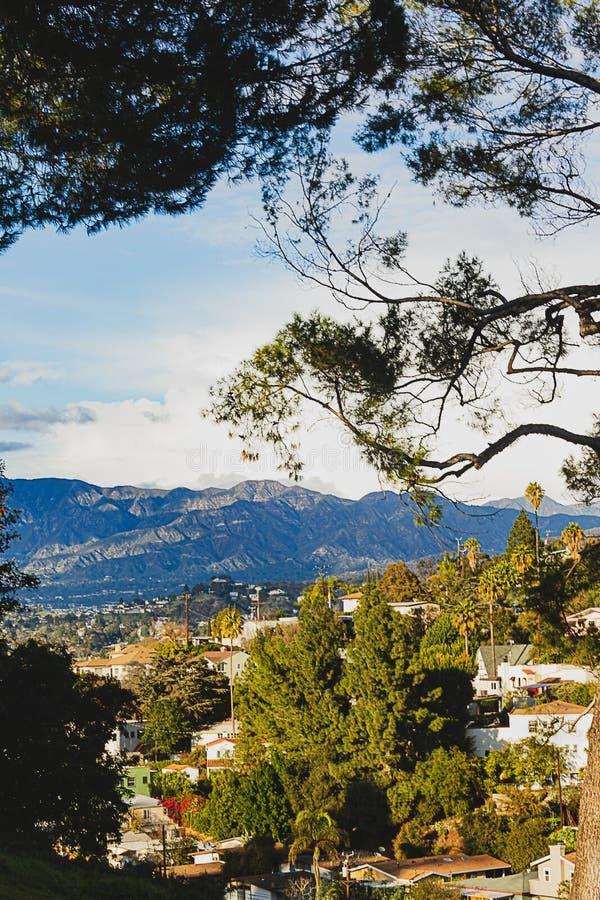 Sempreverdi con la vista panaramic del cielo, delle case della città, dei commerci e delle montagne immagine stock