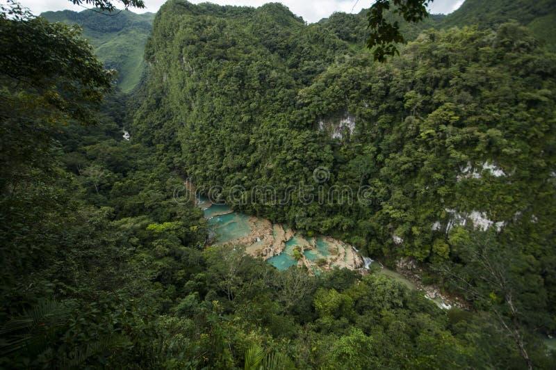 Semuc Champey, Guatemala foto de archivo