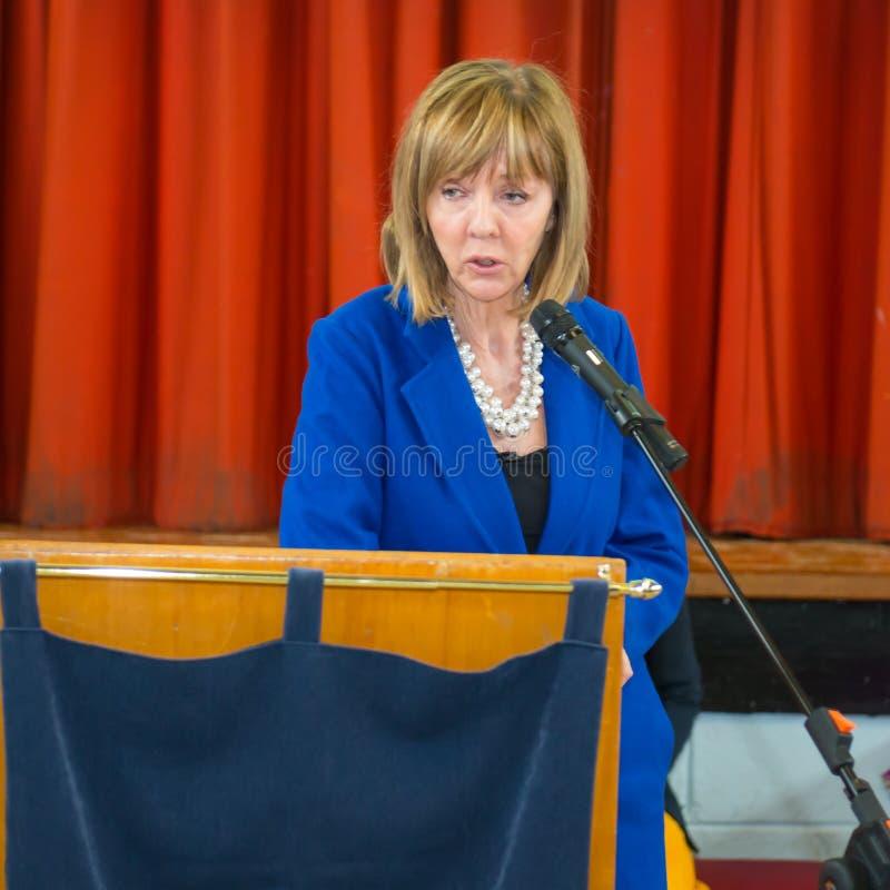 Senador irlandês Joan Freeman do candidato presidencial fotografia de stock royalty free