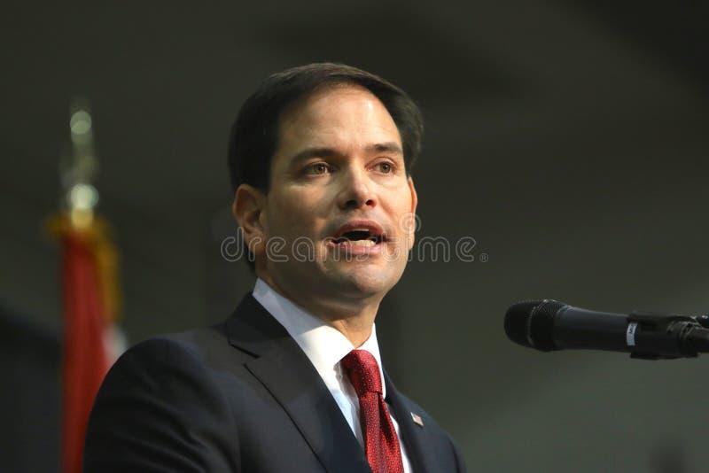 Senador Marco Rubio do candidato presidencial imagens de stock