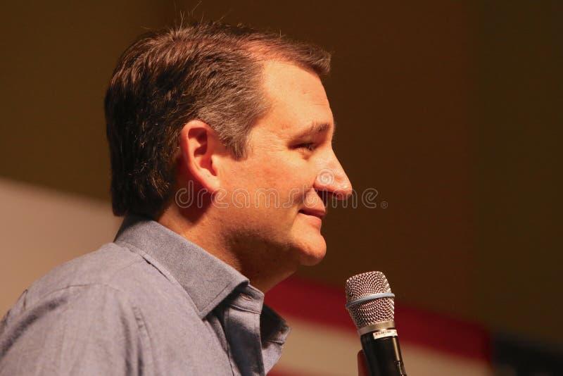 Senador Ted Cruz do candidato presidencial foto de stock royalty free