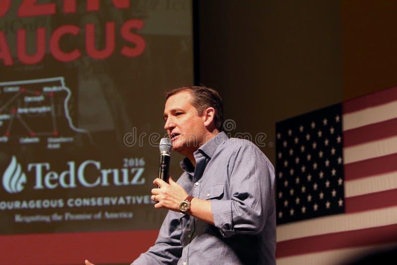 Senador Ted Cruz do candidato presidencial fotografia de stock royalty free