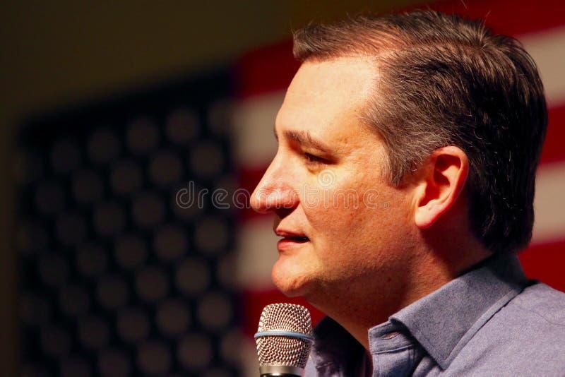 Senador Ted Cruz do candidato presidencial fotos de stock royalty free
